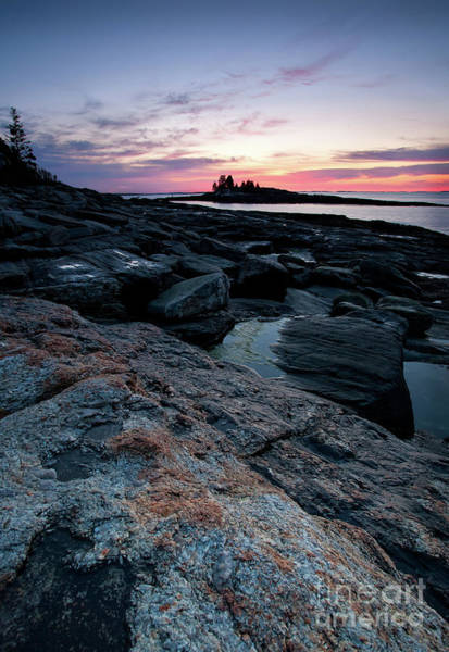 Photograph - Coastal Dawn, New Harbor, Maine #8172 by John Bald