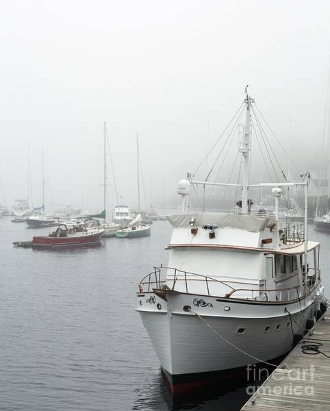 Photograph - Coastal Fog by Karin Pinkham