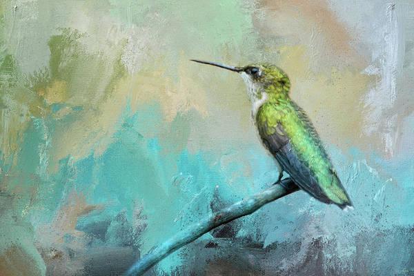 Photograph - Coastal Hummingbird by Jai Johnson