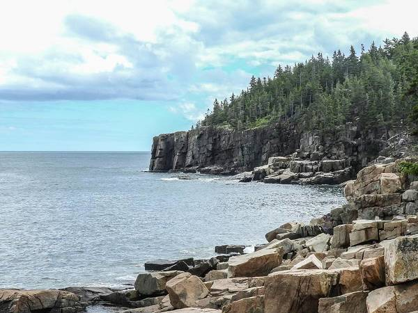 Photograph - Coastal Landscape #2 From Ocean Path Trail, Acadia National Park by NaturesPix
