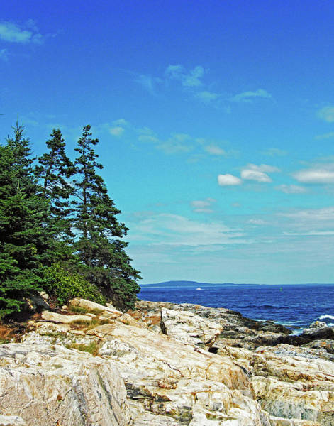 Photograph - Coastal Maine Mt Desert Island by Lizi Beard-Ward