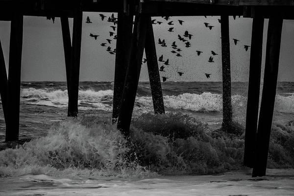 Photograph - Coastal Movements by Nicole Lloyd