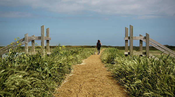 Photograph - Coastal Path by Nick Bywater