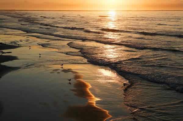 Photograph - Coastal Sunrise by Marilyn Hunt