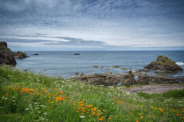 Photograph - Coastal View From Dunbar by Jeremy Lavender Photography
