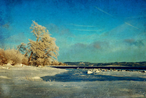 Photograph - Coastal Winter Scene by Randi Grace Nilsberg