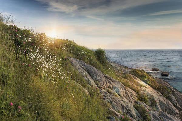 Photograph - Coastline Newport by Robin-Lee Vieira