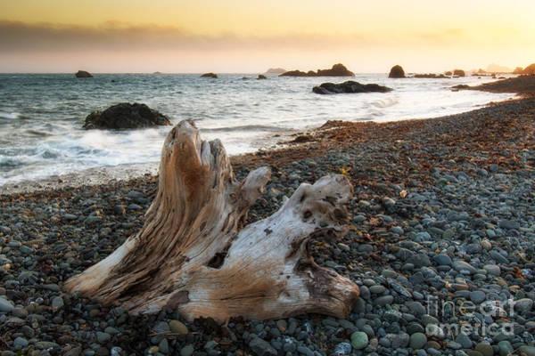 Photograph - Coastline by Vincent Bonafede