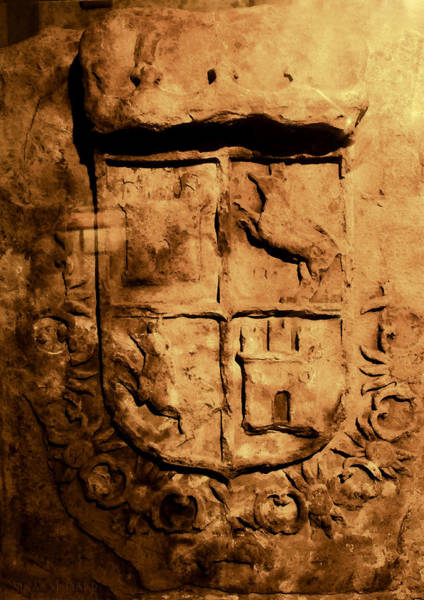 Photograph - Coat Of Arms In St Augustine by Susan Vineyard