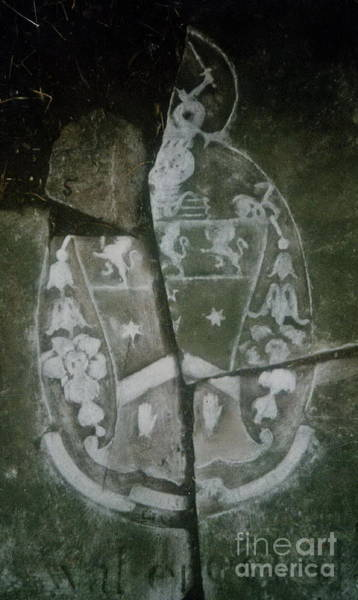 Photograph -  Coat Of Arms by Val Byrne
