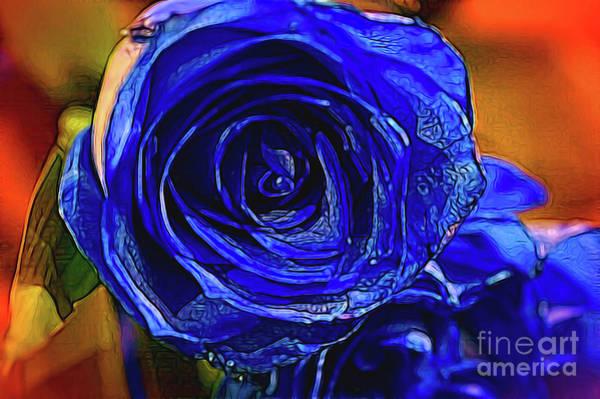 Photograph - Cobalt Blue by Diana Mary Sharpton