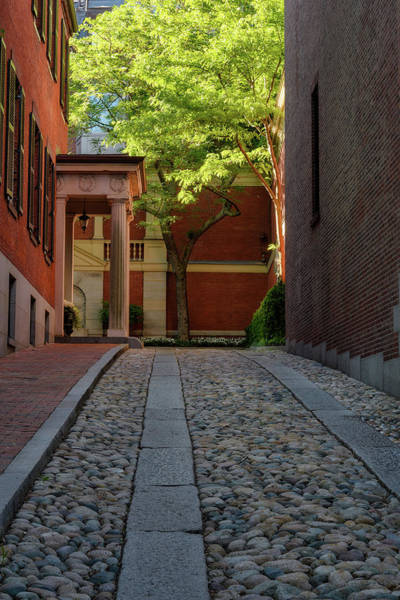 Photograph - Cobblestone Drive by Michael Hubley