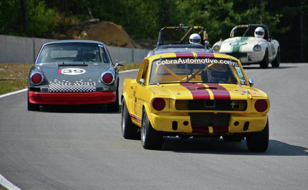 Whiskey Hill Wall Art - Photograph - Cobra Leads Vrg Pack by Mike Martin
