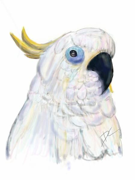 Digital Art - Cockatoo Australia by Darren Cannell
