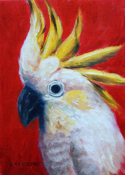 Painting - Cockatoo by Jill Ciccone Pike