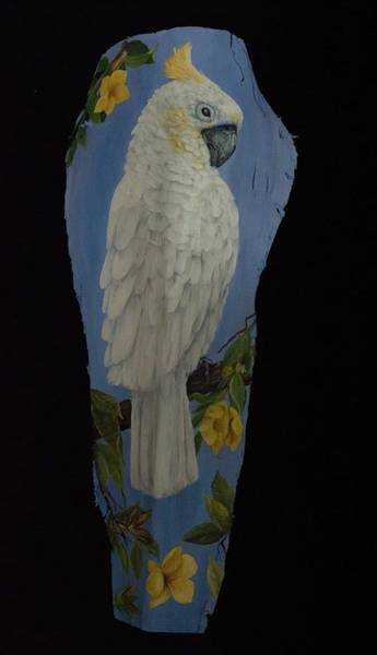 Painting - Cockatoo by Nancy Lauby