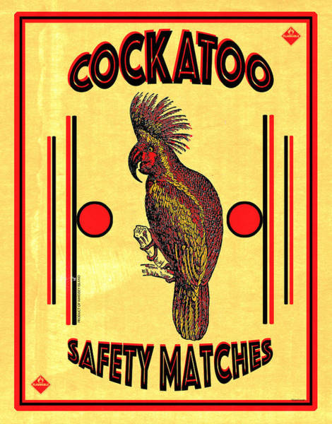 Wall Art - Digital Art - Cockatoo Safety Matches by Carol Leigh