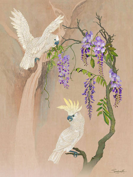 Digital Art -  Cockatoos And Wisteria by M Spadecaller