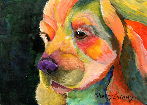 Painting - Cocker Too by Sherry Shipley