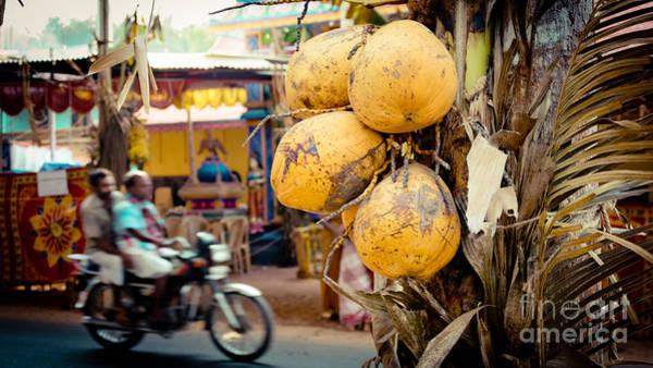 Photograph - Coconut Bike by Raimond Klavins