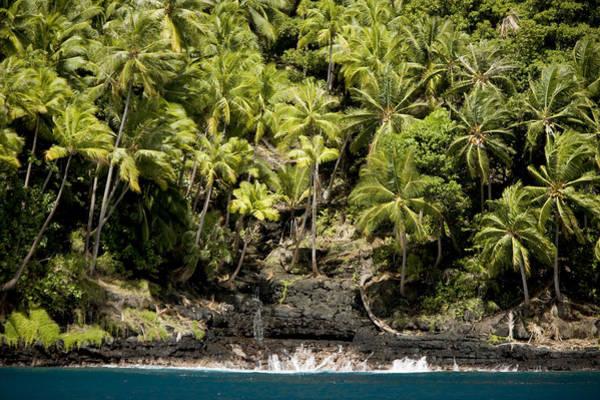 Fatu Hiva Wall Art - Photograph - Coconut Palm Covered Hillsides In Bay by Tim Laman