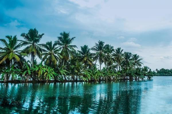 Kerala Wall Art - Photograph - Coconut Trees Reflection At Backwaters Of Kerala, India by Art Spectrum
