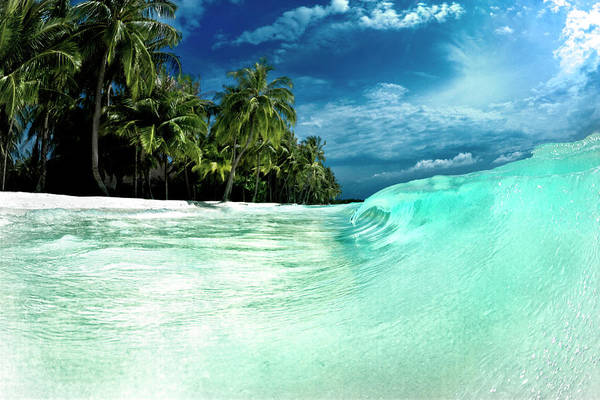 Moving Water Photograph - Coconut Water by Sean Davey