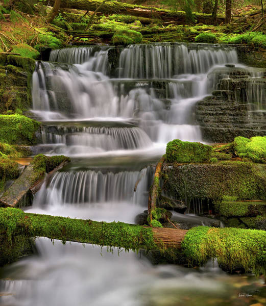 Photograph - Coeur D Alene Forest Waterfall by Leland D Howard