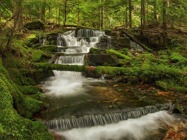 Eloquent Wall Art - Photograph - Coeur D' Alene National Forest Waterfall by Leland D Howard