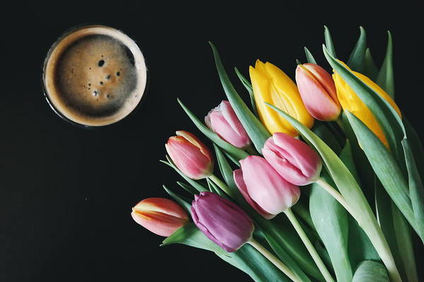 Wall Art - Photograph - Coffee And Tulips by Happy Home Artistry