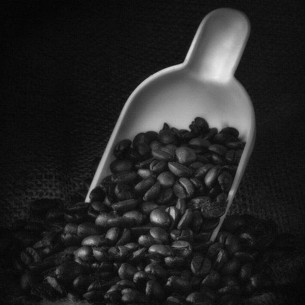 Wall Art - Photograph - Coffee Beans by Ian Barber