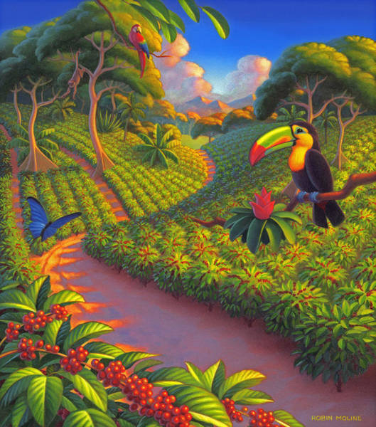 Tropical Bird Painting - Coffee Plantation by Robin Moline