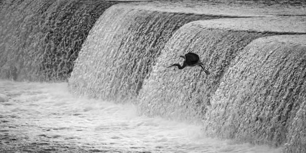 Photograph - Cofferdam Landing by Jeff Phillippi