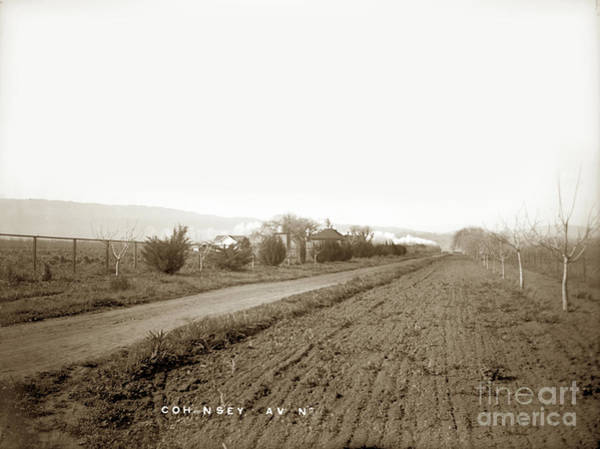 Photograph - Cohansey Avenue, Gilroy, Santa Clara Valley Circa 1900 by California Views Archives Mr Pat Hathaway Archives