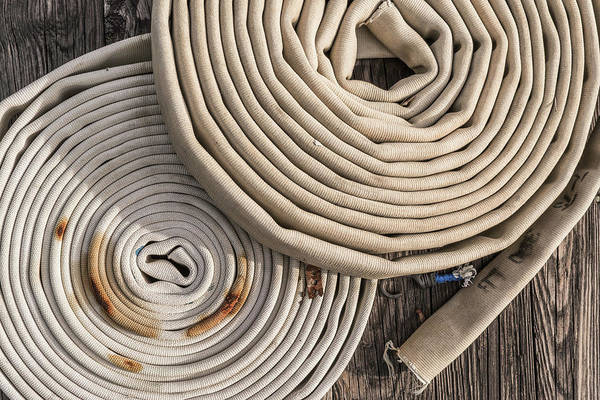 Wall Art - Photograph - Coiled And Ready by Jim Love