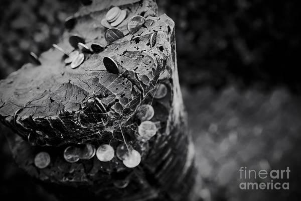 Photograph - Coins Hookupu On Hawaiian Tiki Carving by Sharon Mau