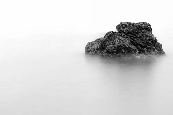 Photograph - Coition by Hayato Matsumoto