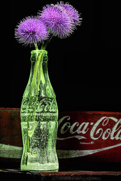 Photograph - Coke And Flower Still Life by JC Findley