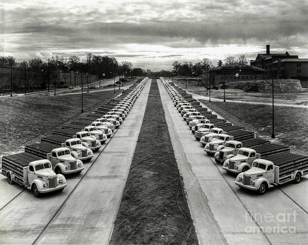 Wall Art - Photograph - Coke Delivery Truck Fleet by Jon Neidert