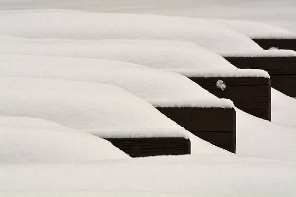 Photograph - Cold Benches In Yellowstone National Park by Bruce Gourley