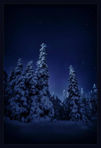 Wall Art - Photograph - Cold Blue Night by Robert Fawcett