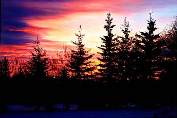 Photograph - Cold Dawn by David Matthews