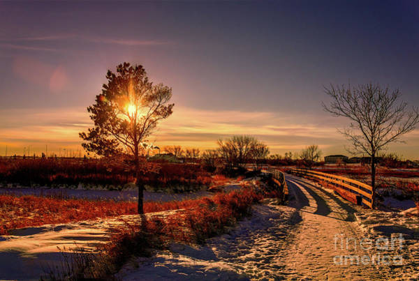 Evening Wall Art - Photograph - Beautiful End Of A Cold Day. by Viktor Birkus