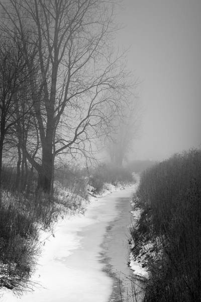 Photograph - Cold Fog by Cathy Beharriell