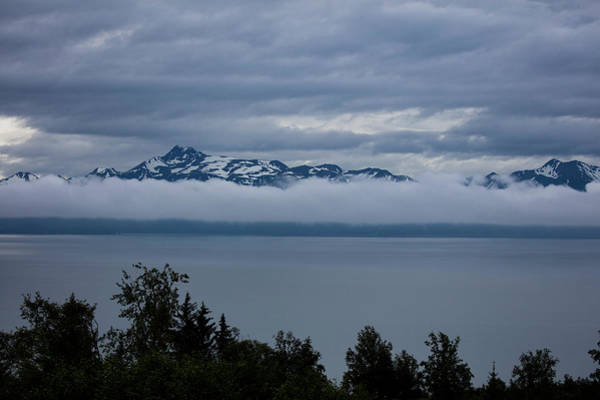 Photograph - Cold Morning In Alaska by Gloria Anderson