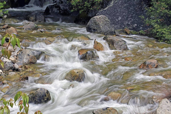 Wall Art - Photograph - Cold Water Creek by Donna Kennedy