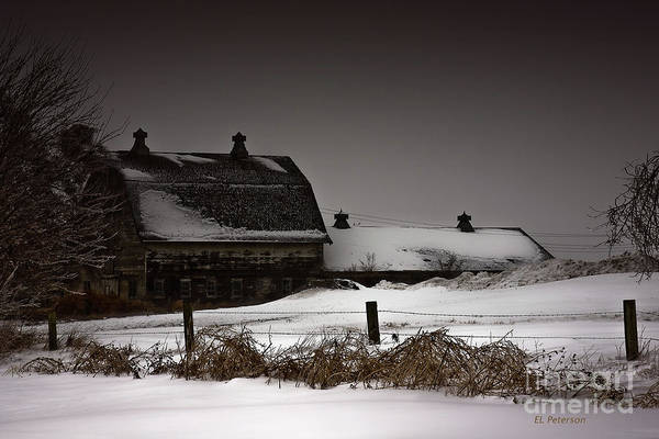 Photograph - Cold Winter Night by Edward Peterson