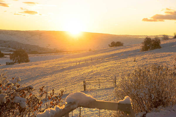 James Craddock Photograph - Colden Morning  by James Craddock