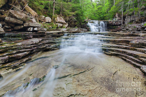 Photograph - Coliseum Falls - Crawford Notch, New Hampshire by Erin Paul Donovan