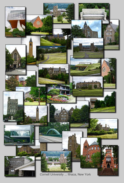 Wall Art - Photograph - Collage Cornell University Ithaca New York Vertical 02 by Thomas Woolworth